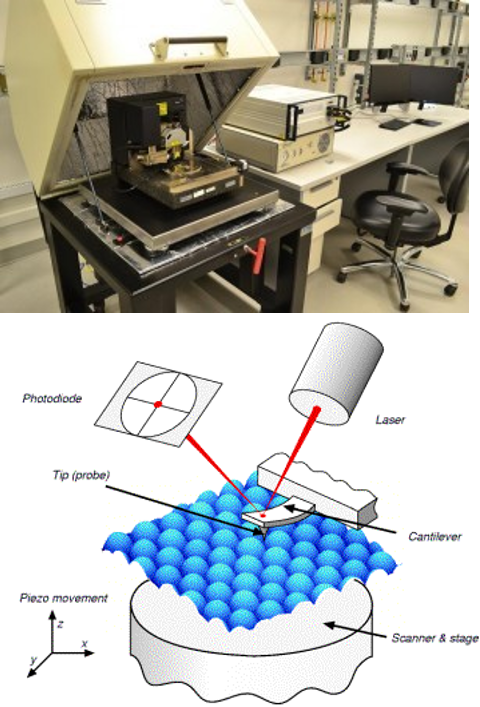 AFM Picture and Schematic
